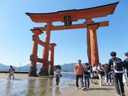 2015miyajima-13.jpg