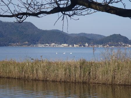 16_12_21hakutyo-1.jpg
