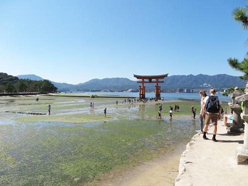 2015miyajima-14.jpg